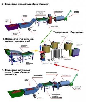 Оборудование (линии) для производства плодоовощной продукции