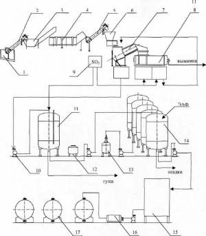 Технологическая схема производства плодово-ягодных вин