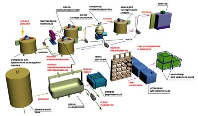 Технологическая линия производства сыра и сметаны